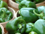 JLP Food Processing - Green Pepper