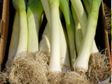 JLP Food Processing - Leeks