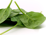 JLP Food Processing - Spinach